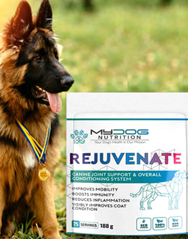 mydognutrition rejuvenate